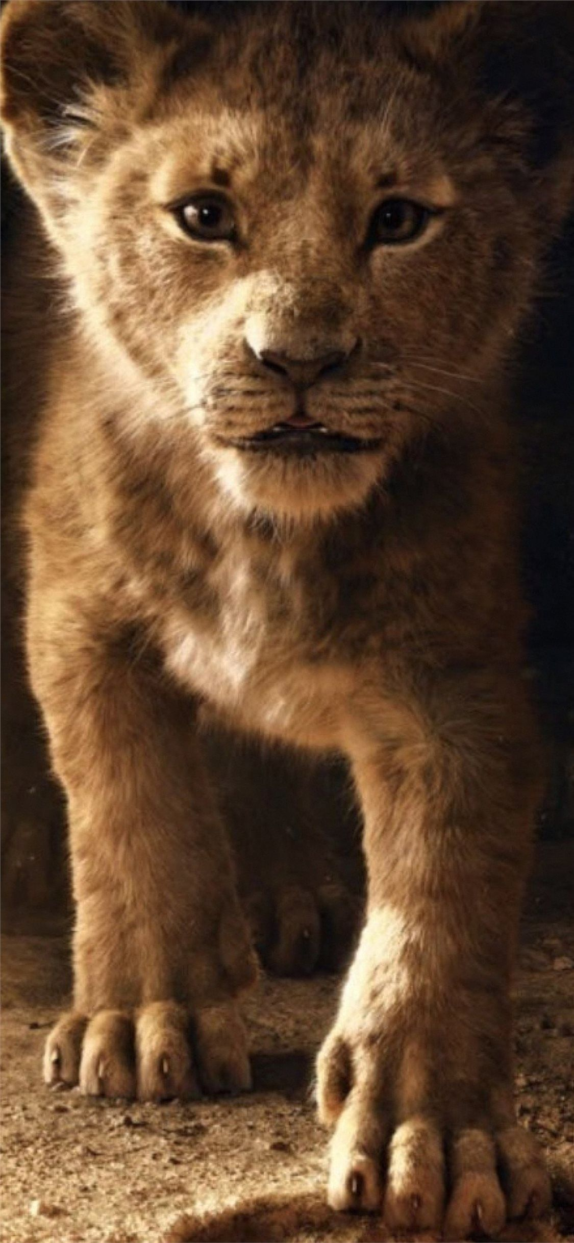 Free Download The The Lion King Simba 2019 4k Wallpaper Beaty Your Iphone The Lion King Lion 2019 Movies Movies 4k Lion King Simba Lion King King Simba Lock screen lion king wallpaper hd 2019