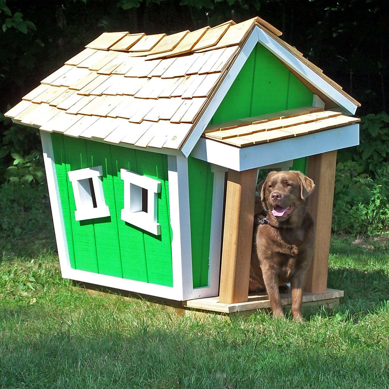 Crooked Doghouses Mini Dog Houses Big Dog House Modern Dog