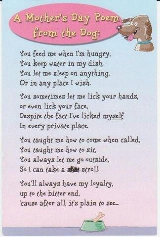 Mothers Day Poem From Dog I Got This My Ubu Many Years Ago For A Birthday Card Mine Was Worded Different After Stroll It Said