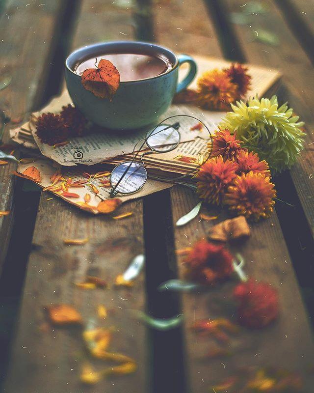 Autumn Bliss | flowers, coffee και autumn #autumnscenery