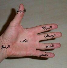 أسماء أصابع اليد Learning Arabic Safety Rules For Kids Arabic Resources