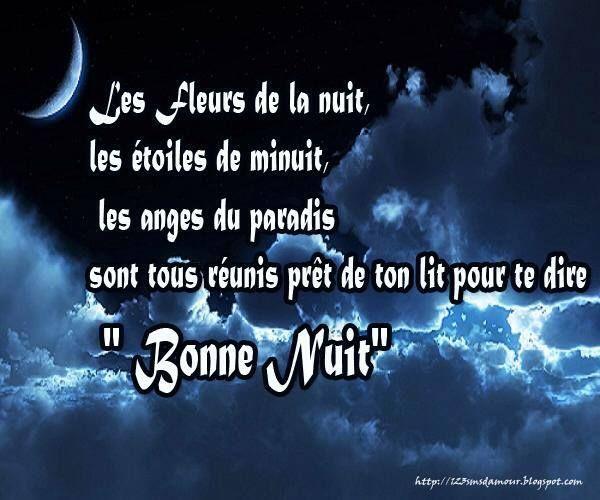 Les Fleurs De La Nuit Les étoiles De Minuit Les Anges Du
