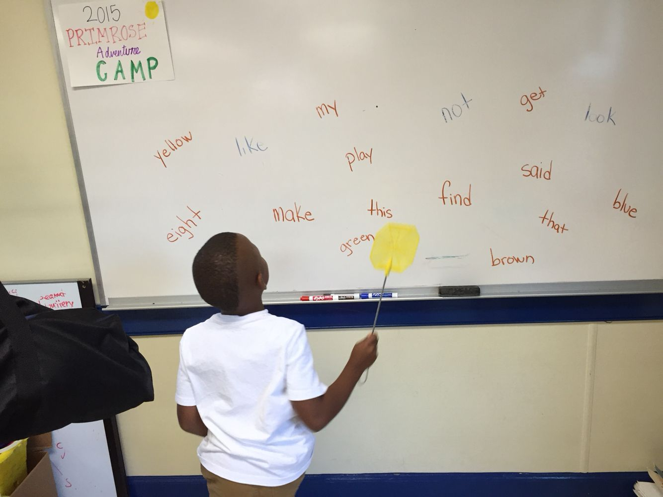Sight Word Slap With Fly Swatter