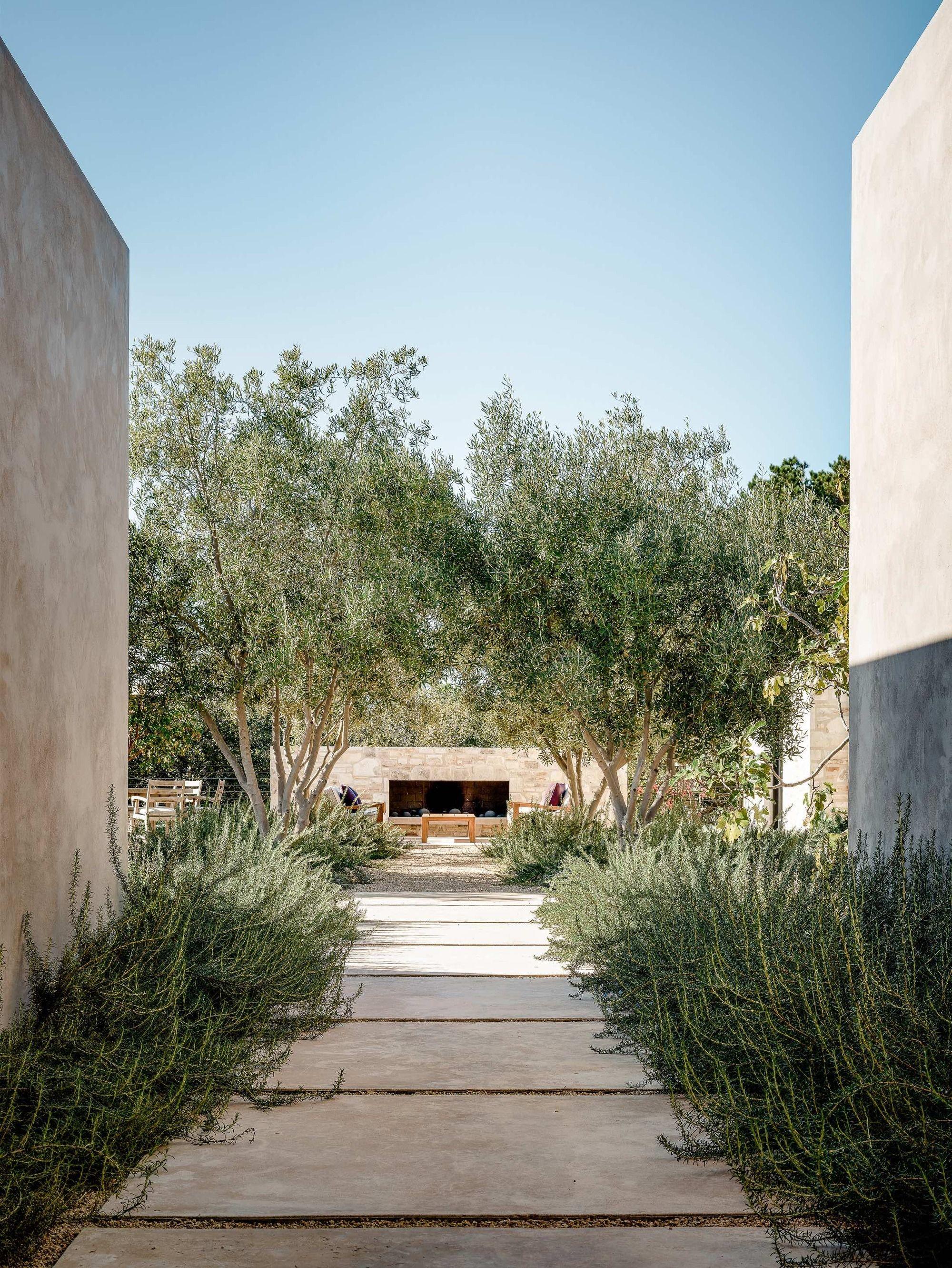 Gallery of Tehama 1 House  / Studio Schicketanz  -