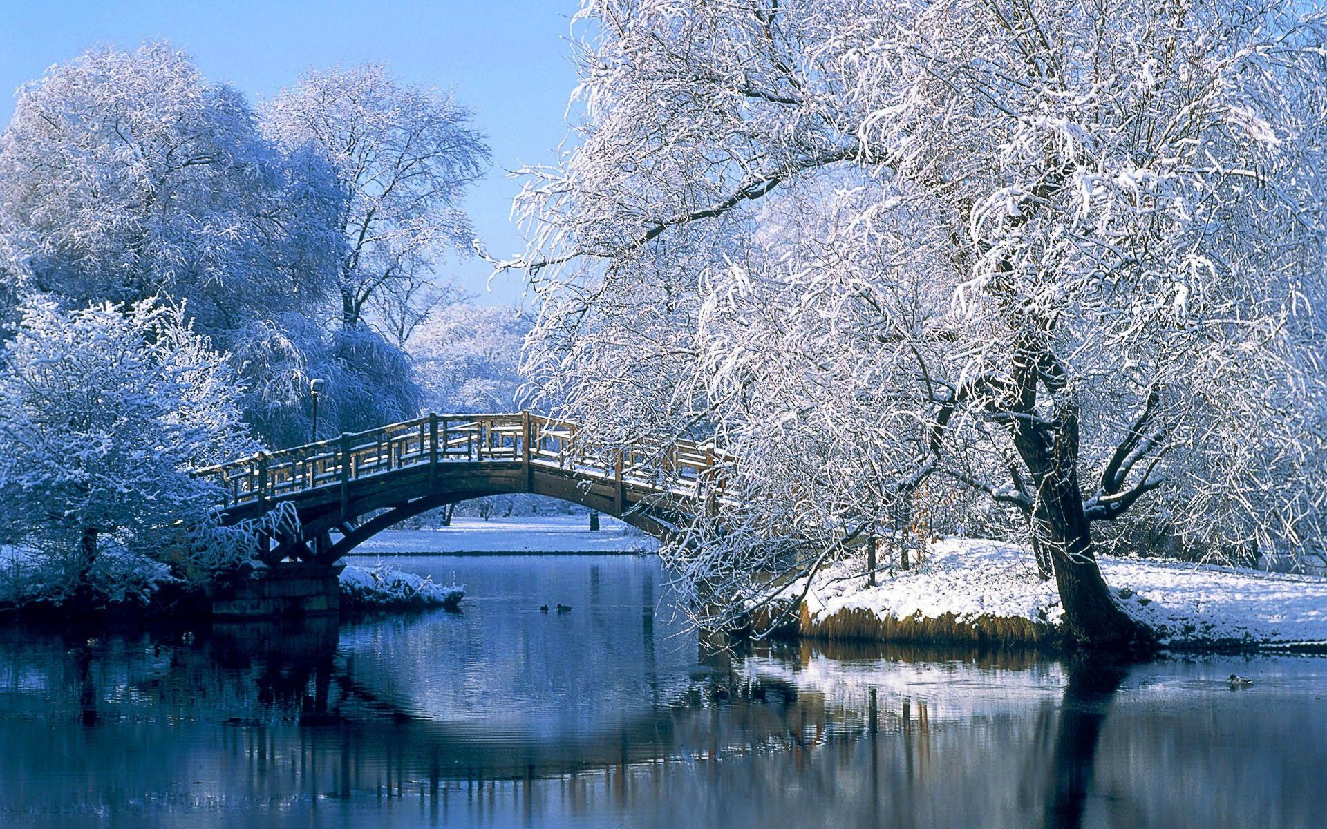 Fotos de invierno para fondo de pantalla buscar con for Buscar imagenes de fondo de pantalla