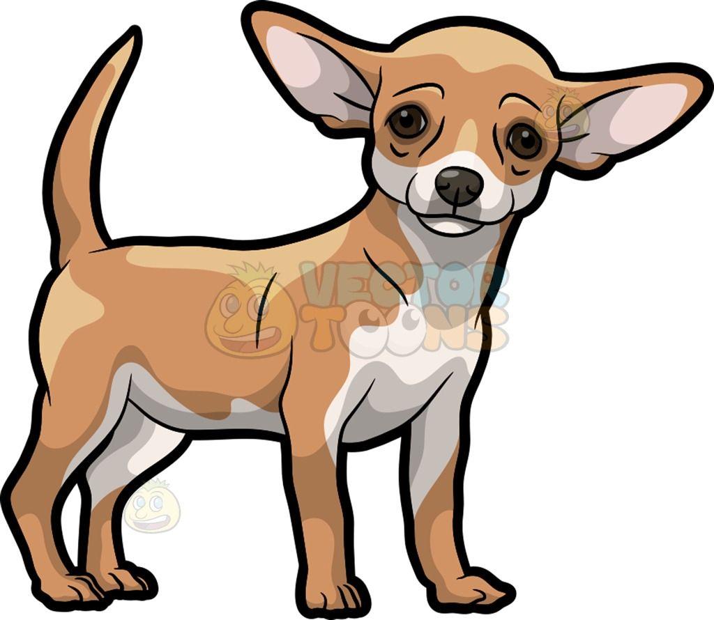 A Beautiful Chihuahua Chihuahua Drawing Cute Dog Drawing Cute Animal Drawings [ 890 x 1024 Pixel ]