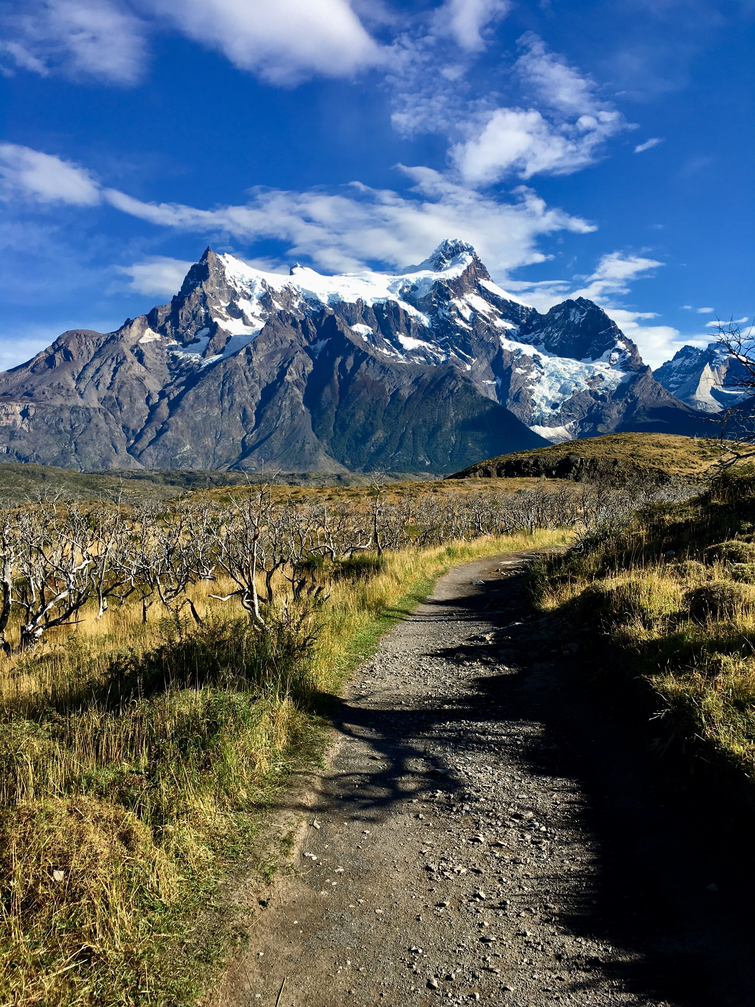 Patagonia Chile South America Bucket list Pinterest