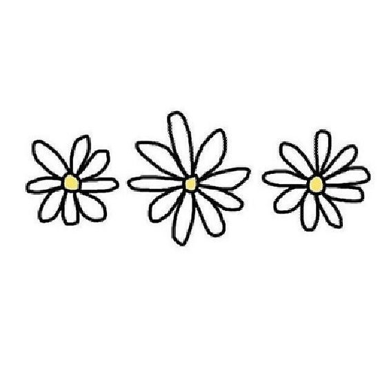 Daisies Tumblr Flower Tumblr Png Theme Dividers Instagram