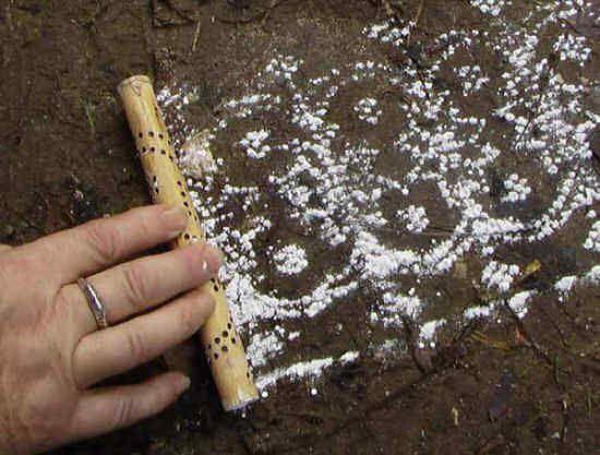 un bambou perc de trous qui une fois rempli de poudre de riz dessine des motifs sur le sol. Black Bedroom Furniture Sets. Home Design Ideas