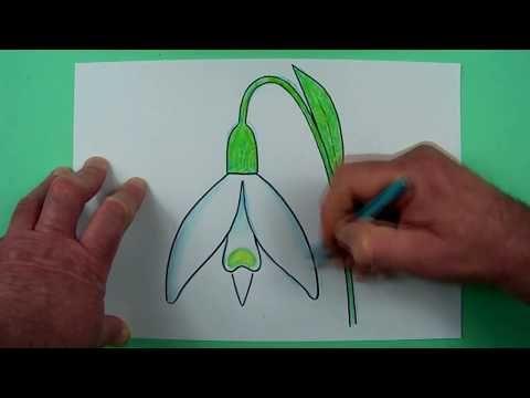 wie zeichnet man ein schneeglöckchen? zeichnen für kinder und jedem, dem es spaß macht