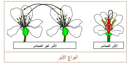 نتيجة بحث الصور عن التكاثر عند النبات Gaming Logos Logos