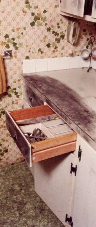 keddie cabin 28 murder scene snapped true crime pinterest true
