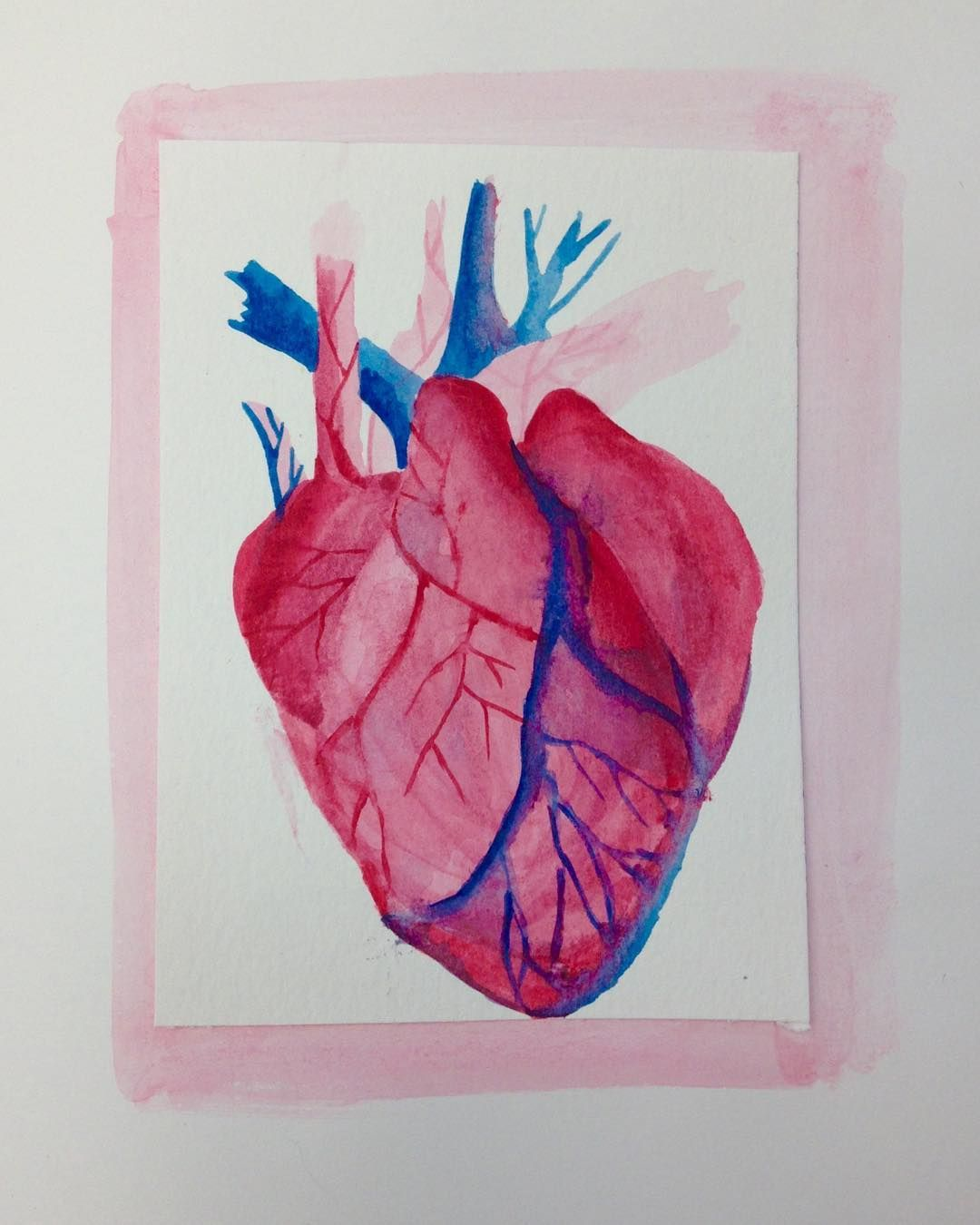 Anatomical Heart In Watercolor Anatomical Heart Painting