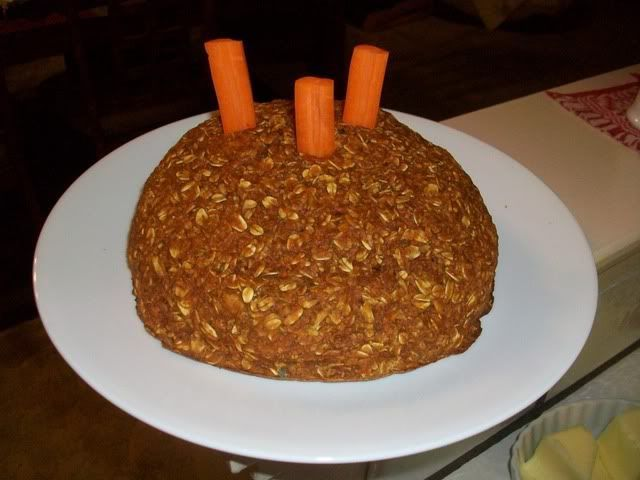 Homemade Birthday Cake For Horses