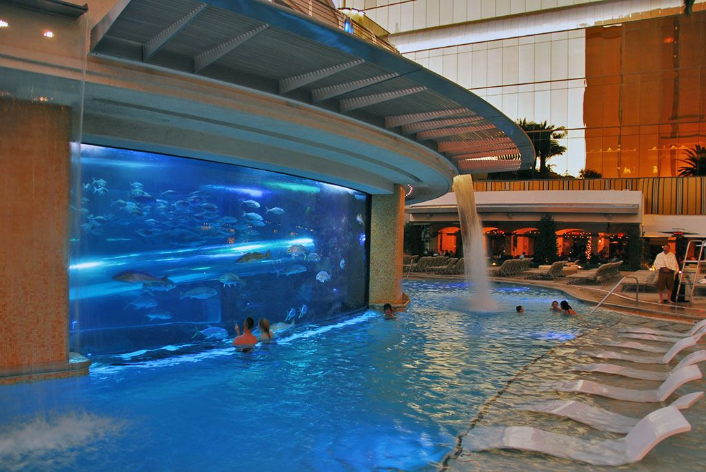 Pool At The Golden Nugget With A Waterslide Through The Shark Tank Las Vegas Travel
