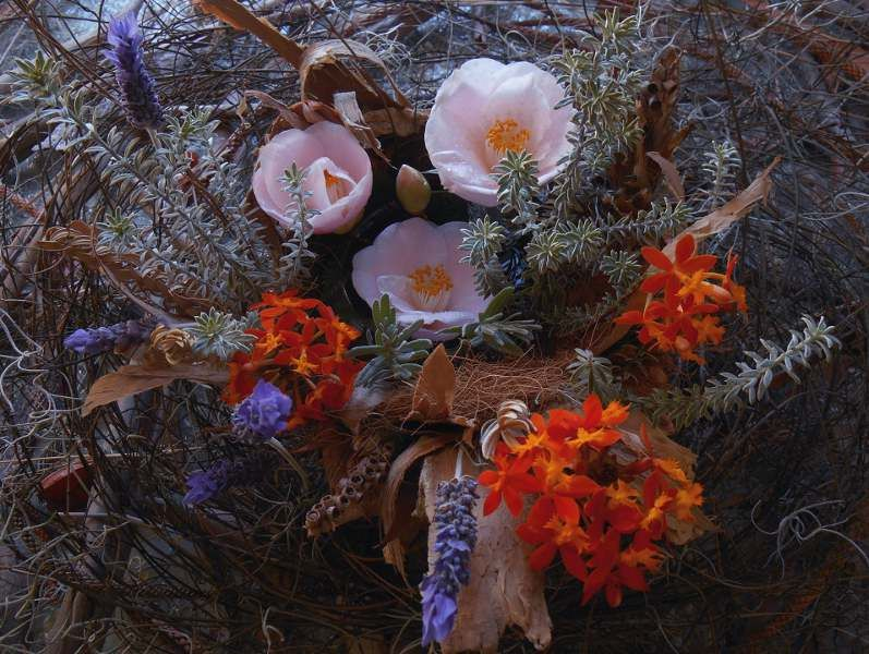 You are the universe in ecstatic motion. ~Rumi Assemblage and photograph by Alison Lee Cousland.