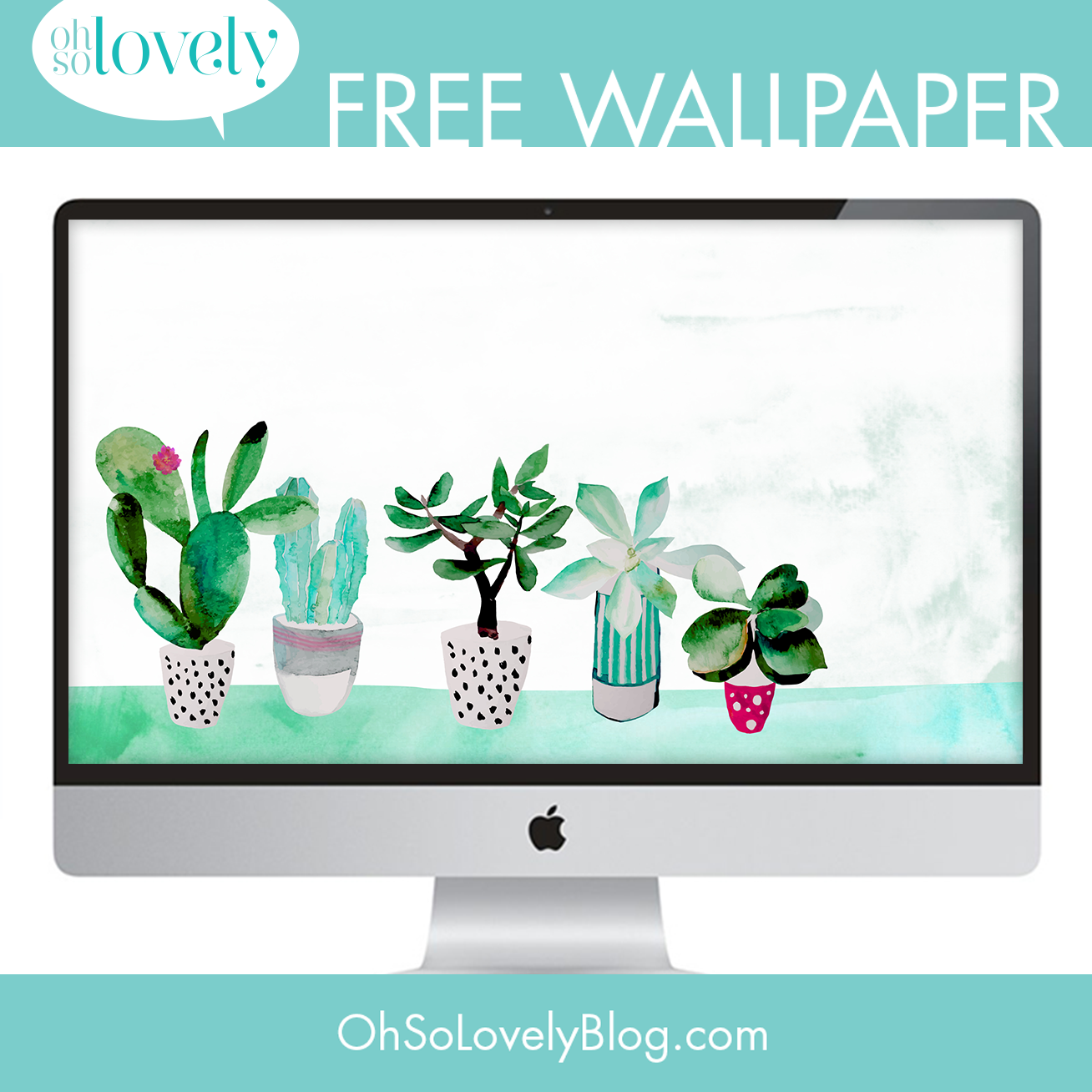 Oh So Lovely Blog Freebie Succulent Desktop Wallpaper Phone