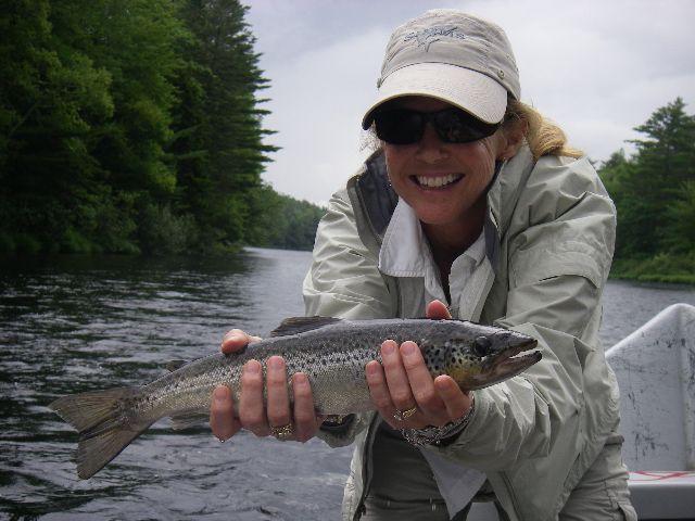 Great Maine Landlock Salmon Fly Fishing Maine Fish