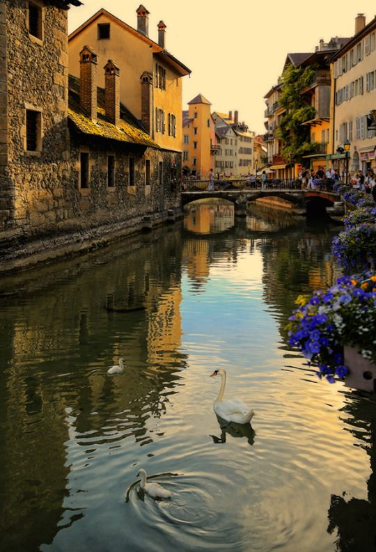 Summer evening in Annecy, France
