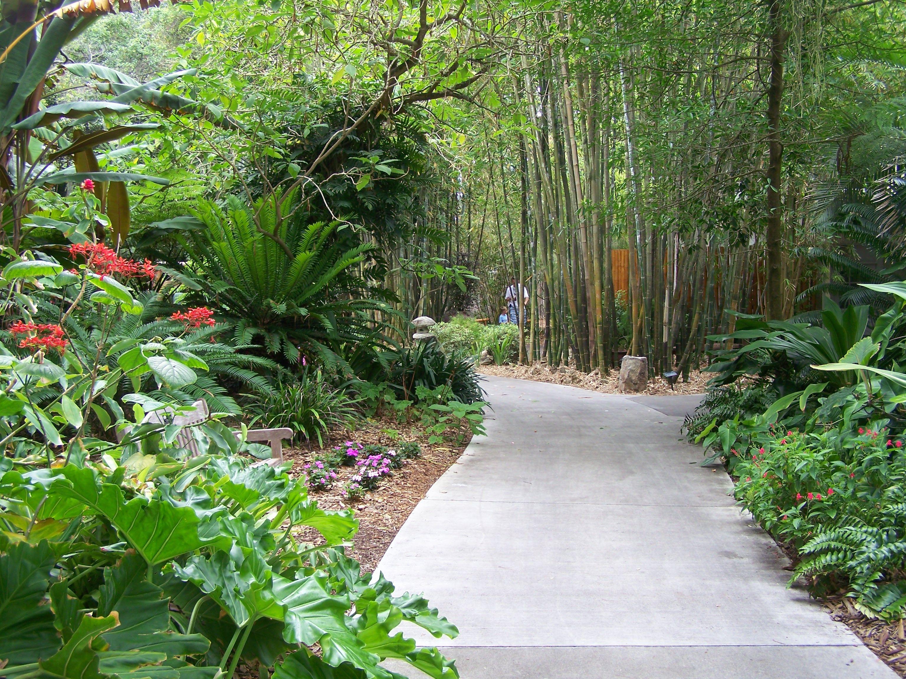 Through The Garden Gates At Marie Selby Botanical Gardens Sarasota Florida Sarasota Cheap Things To Do Beautiful Places To Visit