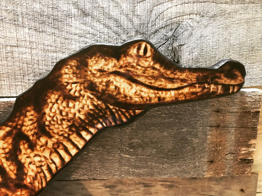 Woodburned Alligator From Cape Fear Torch This Guy Is Almost 5
