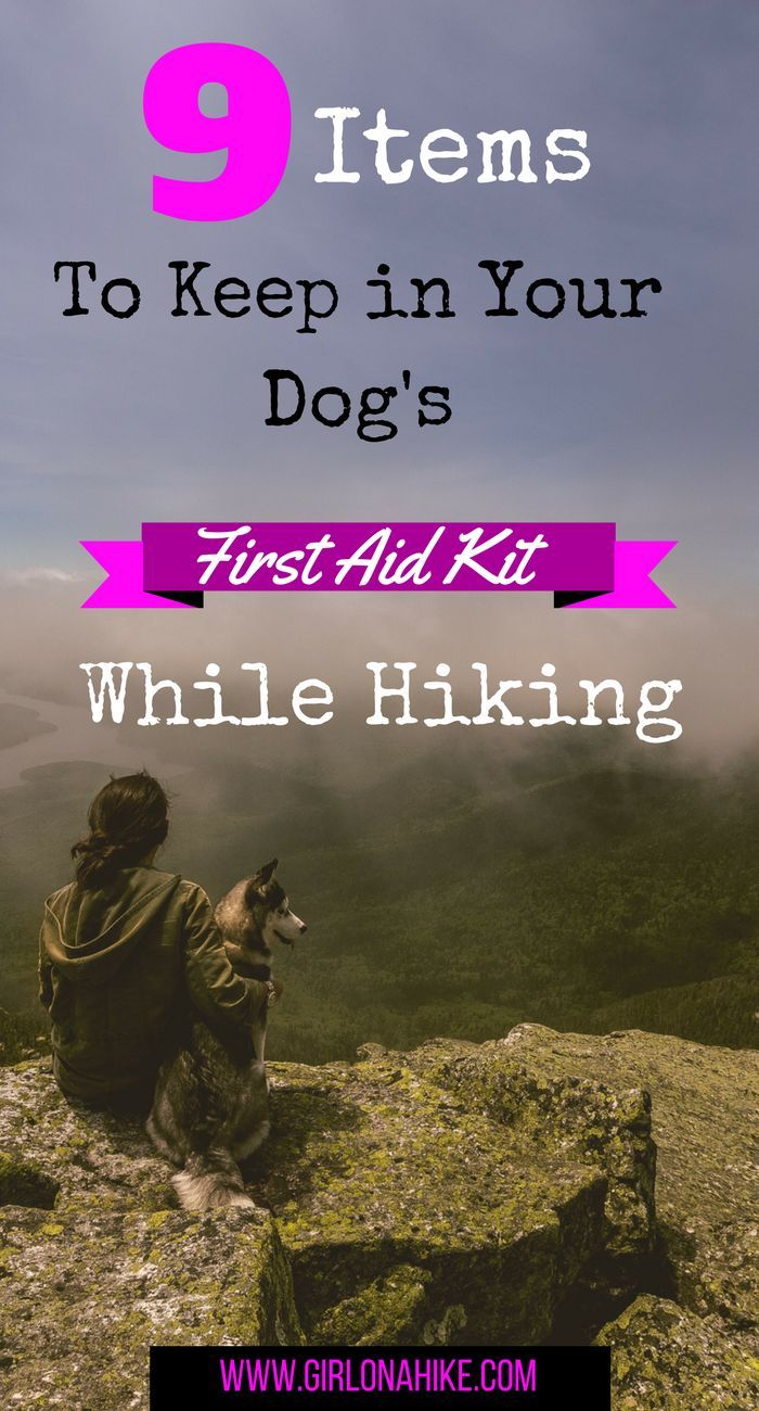 Girl on a Hike: 9 Items to Keep in Your Dog's First Aid Kit while Hiking