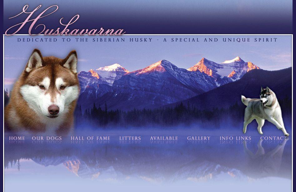 Siberian Husky Puppies Ohio Huskavarna Siberian Husky Siberian
