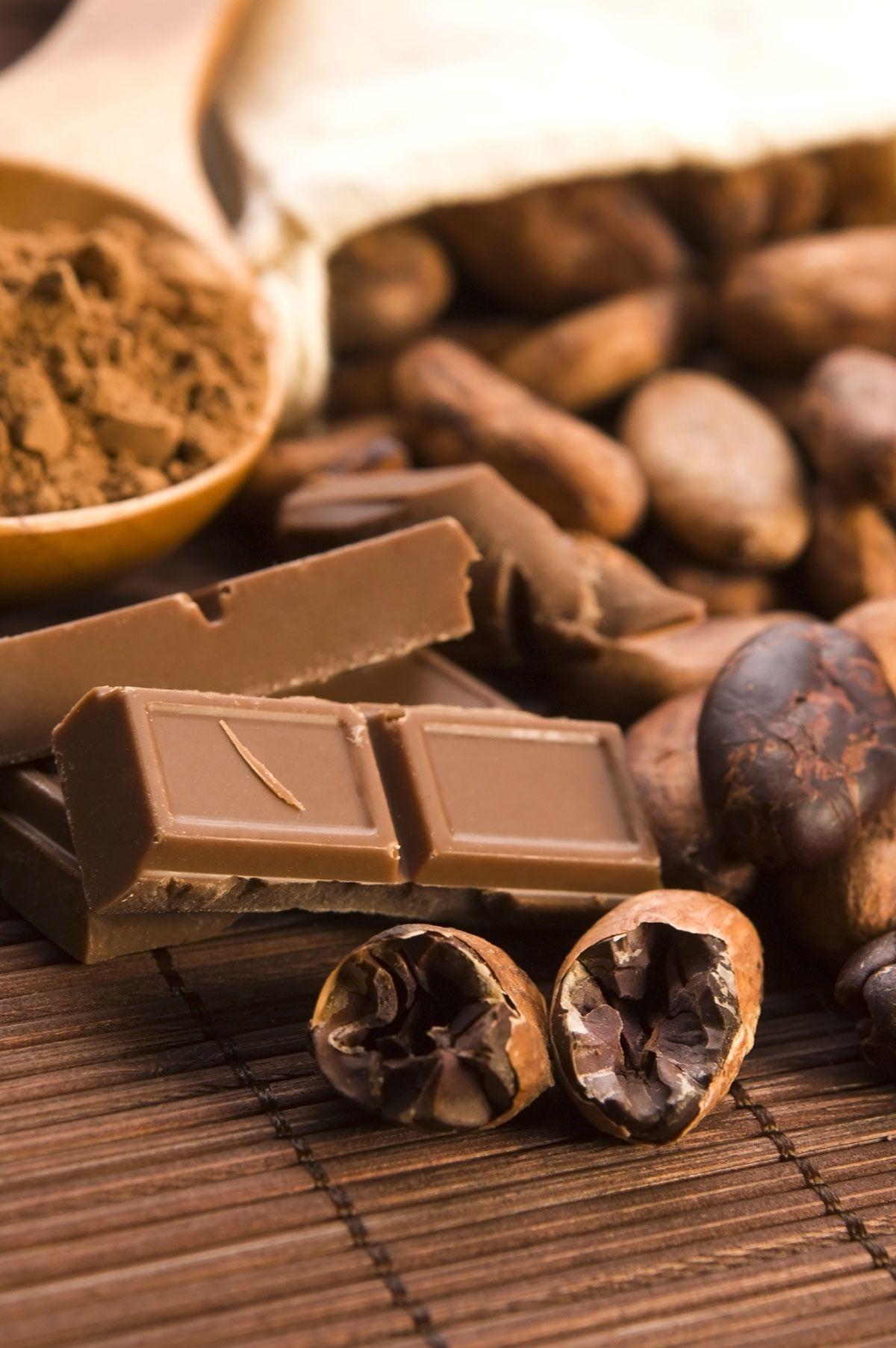 feves-cacao-chocolat