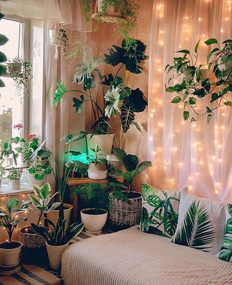 "Vintage on Instagram: ""What a lovely corner 💚💚 . . . #plants #followforfollowback #artblog #instagood #instadaily #instagram #art #artistsoninstagram #artist…"""