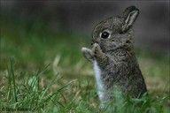 so cute.!<3