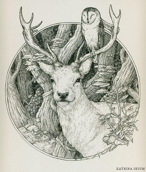 Drawing Illustration Art Owl Deer Antlers Barn Owl Dessin