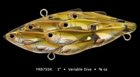 17 best images about fishing on pinterest | rigs, lures for bass, Fishing Bait
