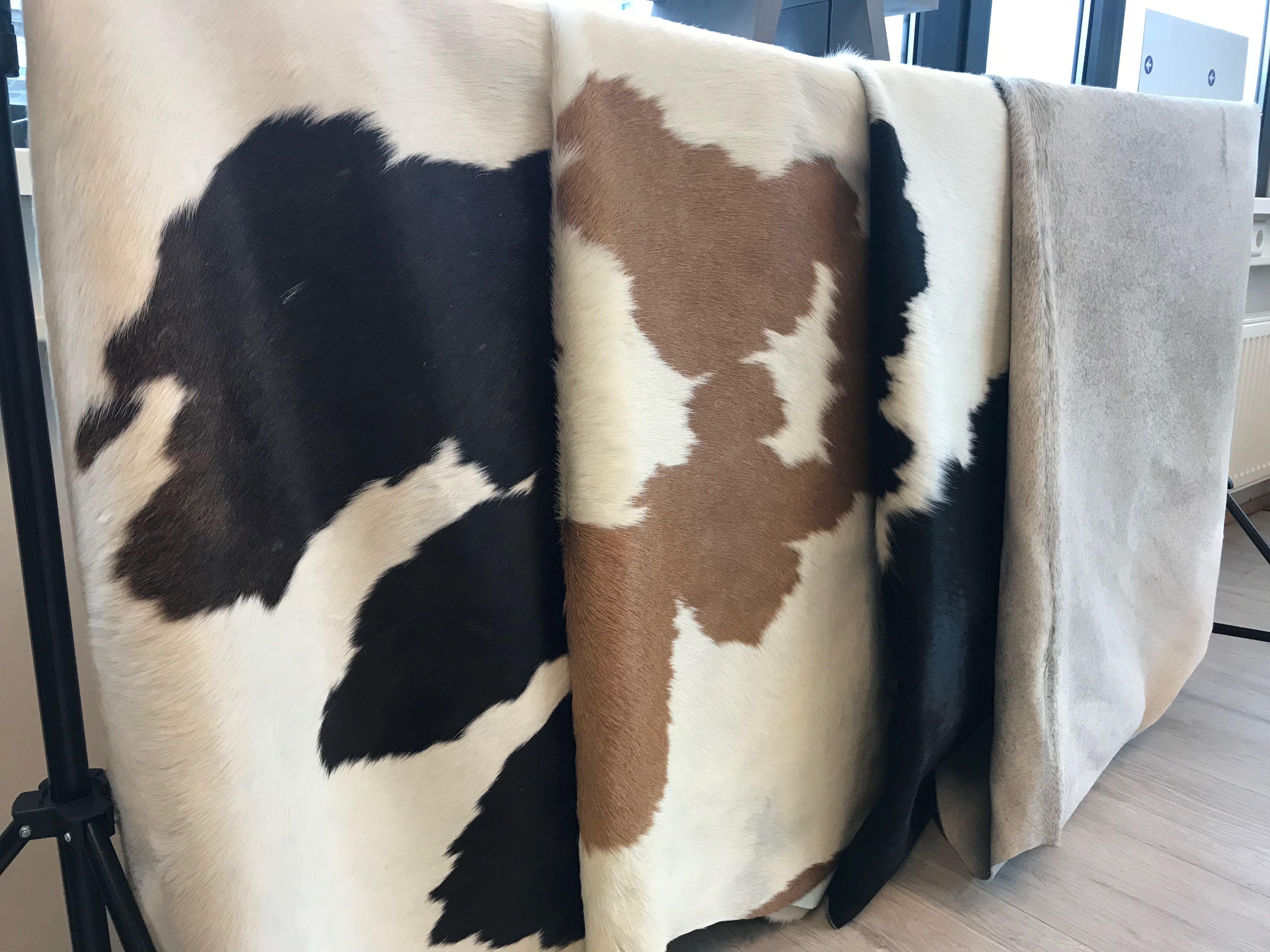 Verschillende kleuren koeienvellen. #koeienhuid #koevel #vloerkleed