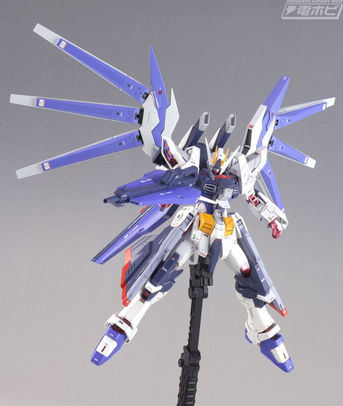 Modeler Naoki Model Title Amazing Strike Freedom Gundam Fin