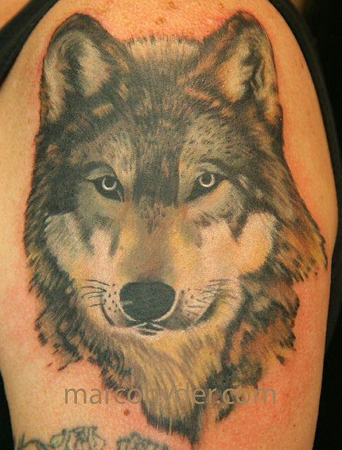 marco hyder wolf tattoo 2