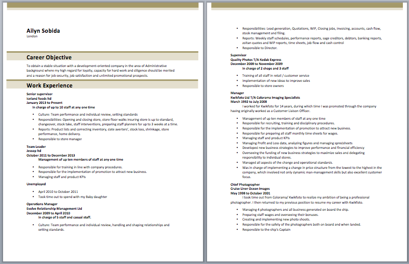 store incharge resume
