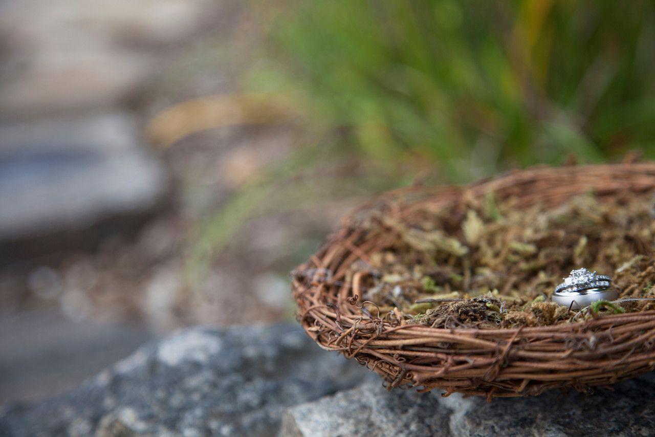 Birds Nest Ring