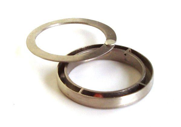 'Verborgen Kamers' prachtige ring in witgoud en bloedkoraal, 2008 van Johanneke van Helden