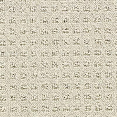 Martha Stewart Living Springwood Sisal 6 In X 9 In Take Home Carpet Sample 908207 The Home Depot Home Carpet Sisal Carpet Carpet Samples