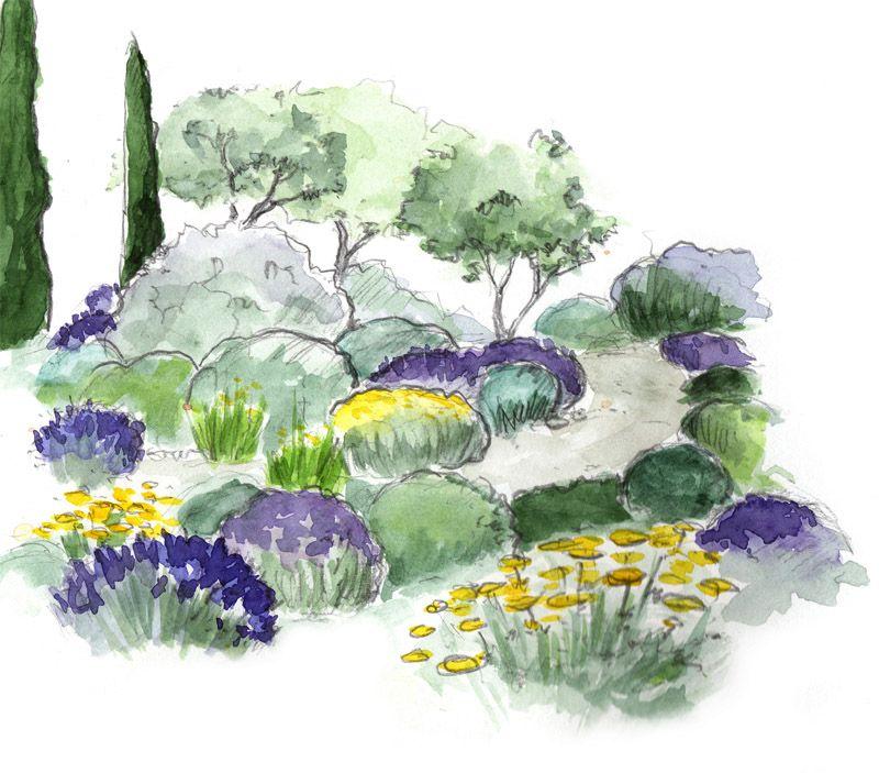 jardin m diterran en jardin sec conseil plan jardin garden design horticulture landscape. Black Bedroom Furniture Sets. Home Design Ideas