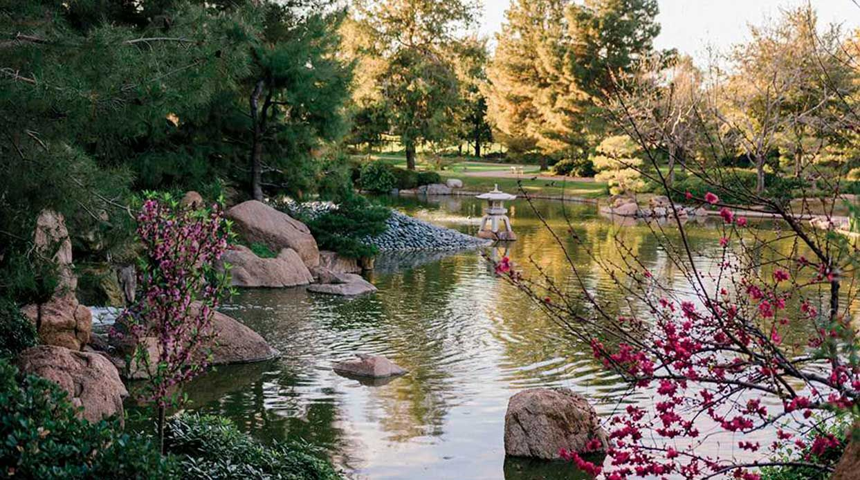 Get Inspired by Phoenix's Japanese Friendship Garden