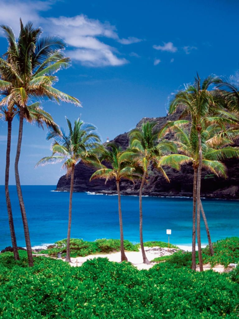 Top 50 Destination Wedding Spots LocationsBest