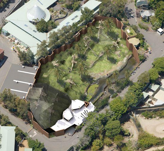 Taronga Zoo Chimpanzee Enclosure Jackson Teece Zoo Architecture Zoo Park Columbus Zoo