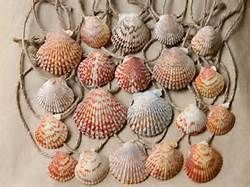 idea for found seashell ornament - Bing Images