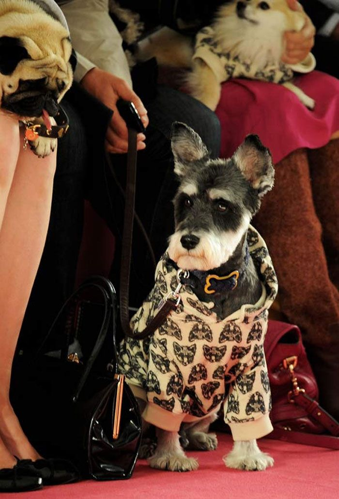 For-Legged A Listers front row at Mulberry