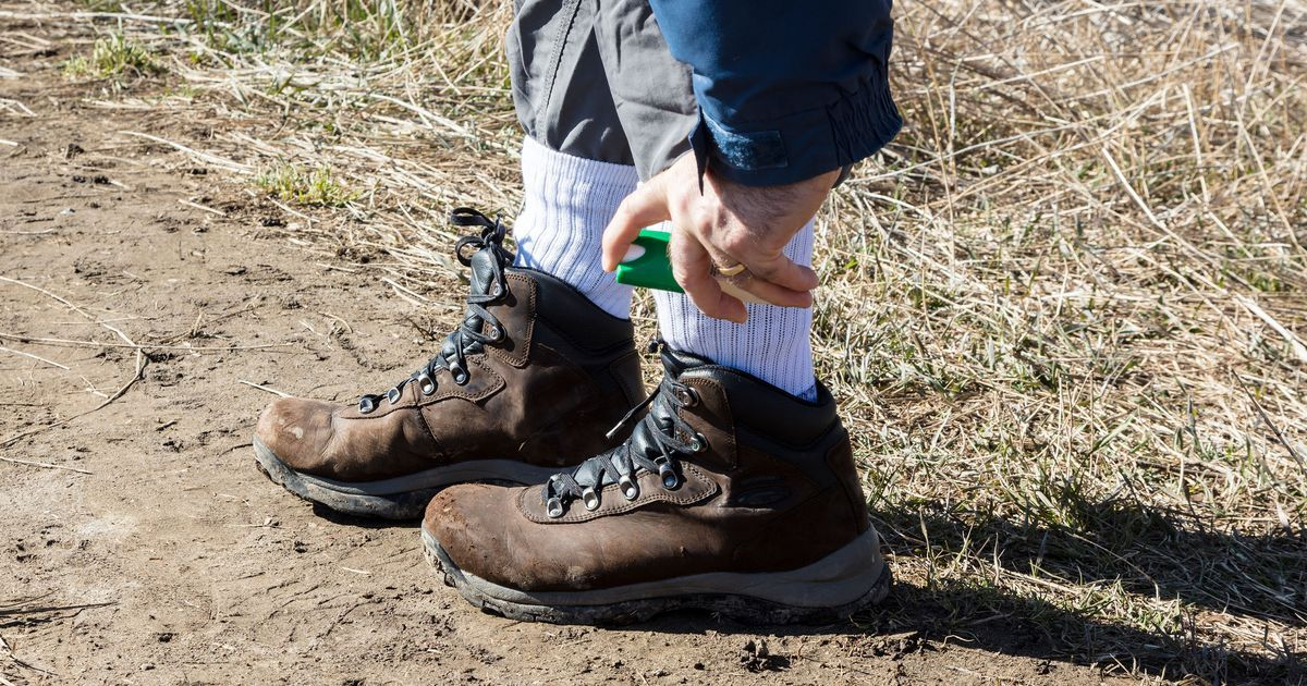 The Most Effective Tick Repellents for Humans (and Dogs