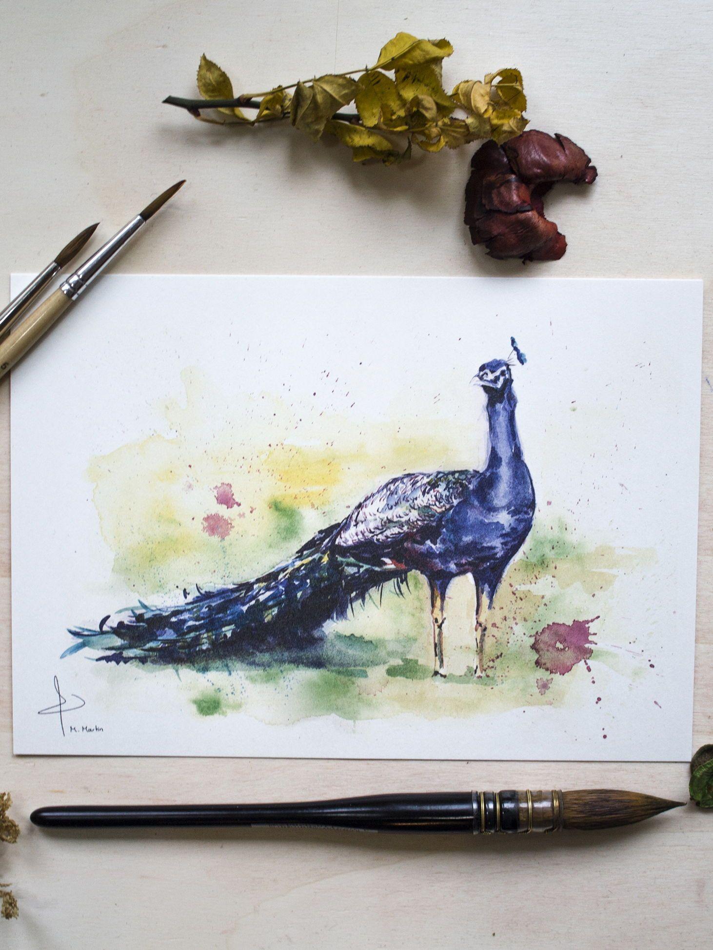 A5 Size A4 Peacock Watercolour Animal illustration Art Print A3