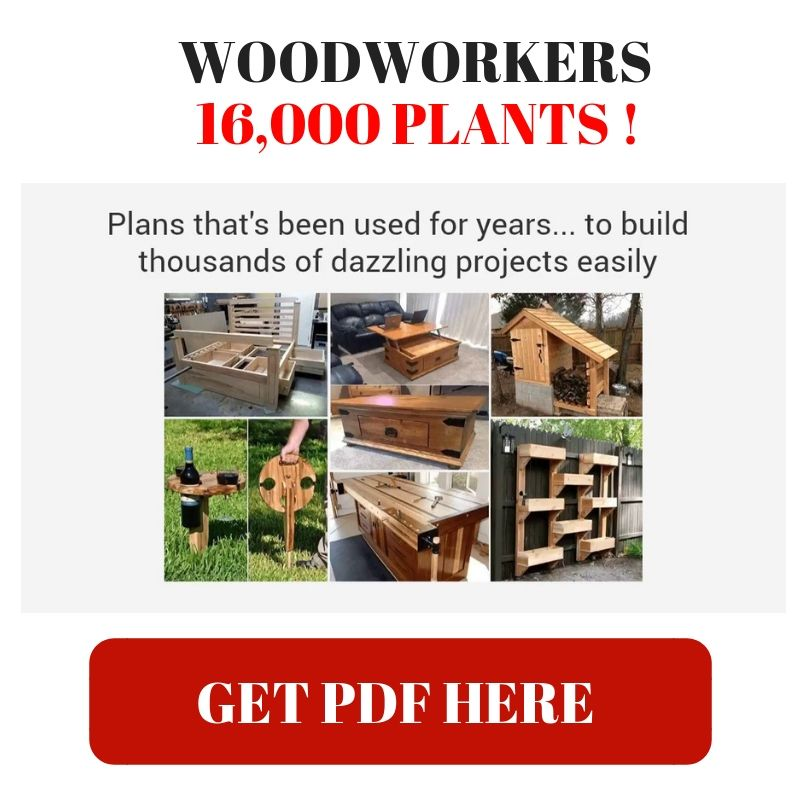 Teds Woodworking Review Pdf If You Are One Of Those People Who Enjoys Building Woodworking Craft Woodworking Plans Pdf Woodworking Projects Crafts Woodworking