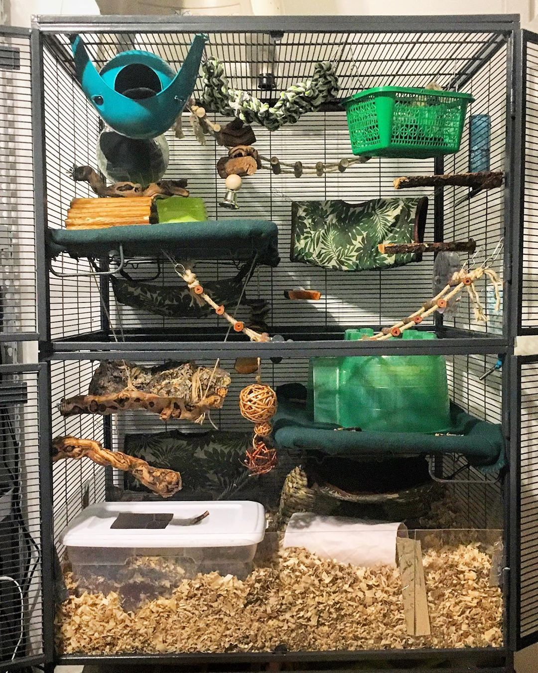 Jessica Mother Of Dragons On Instagram Tada My Naturalistic Rat Cage It Is Complete With 1 Sorta Green Space Pod Sputni Rat Cage Pet Rat Cages Pet Rats