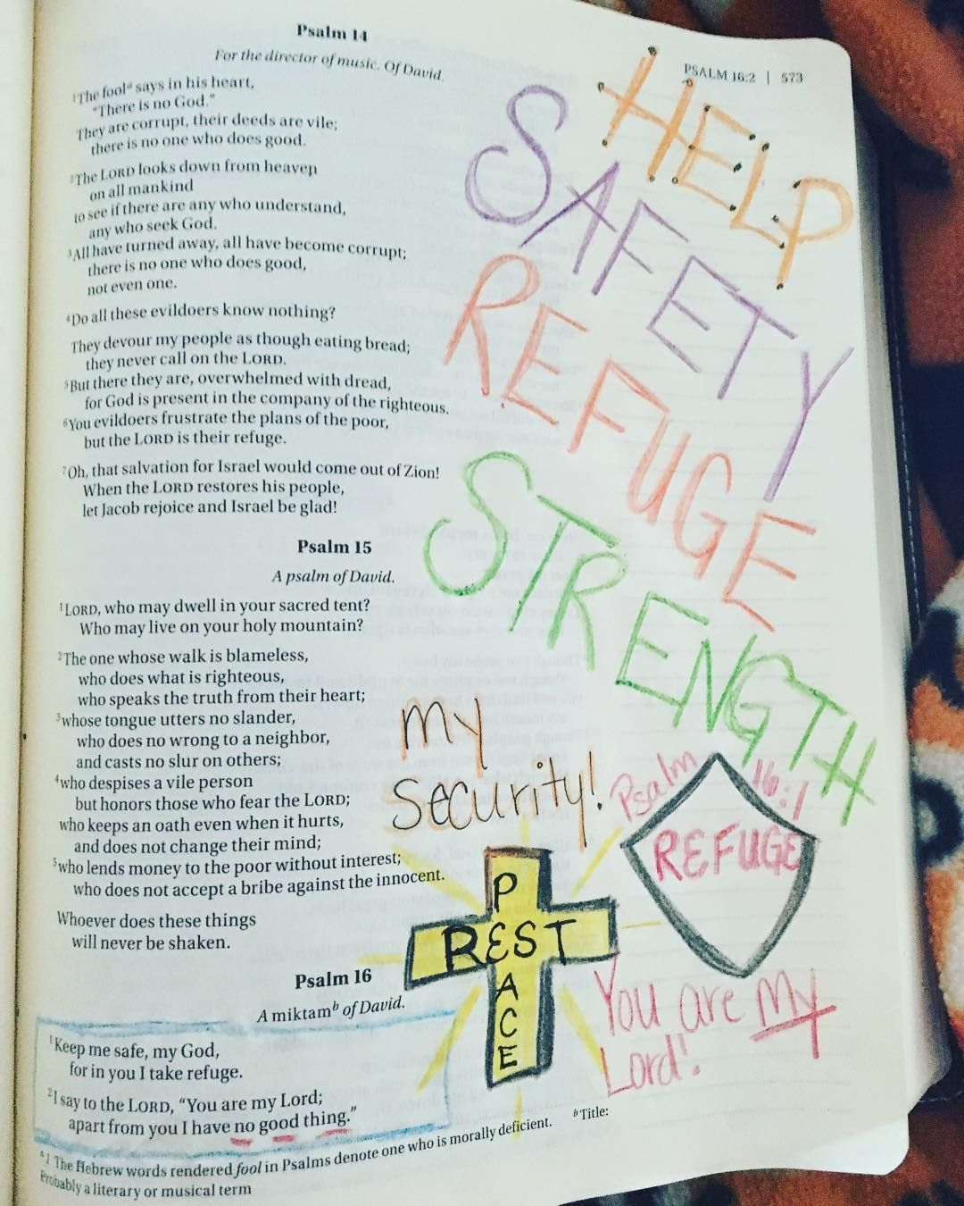 Two verses can say so much!  #biblejournaling #journalingfaith #psalm16 by sarahdmurray